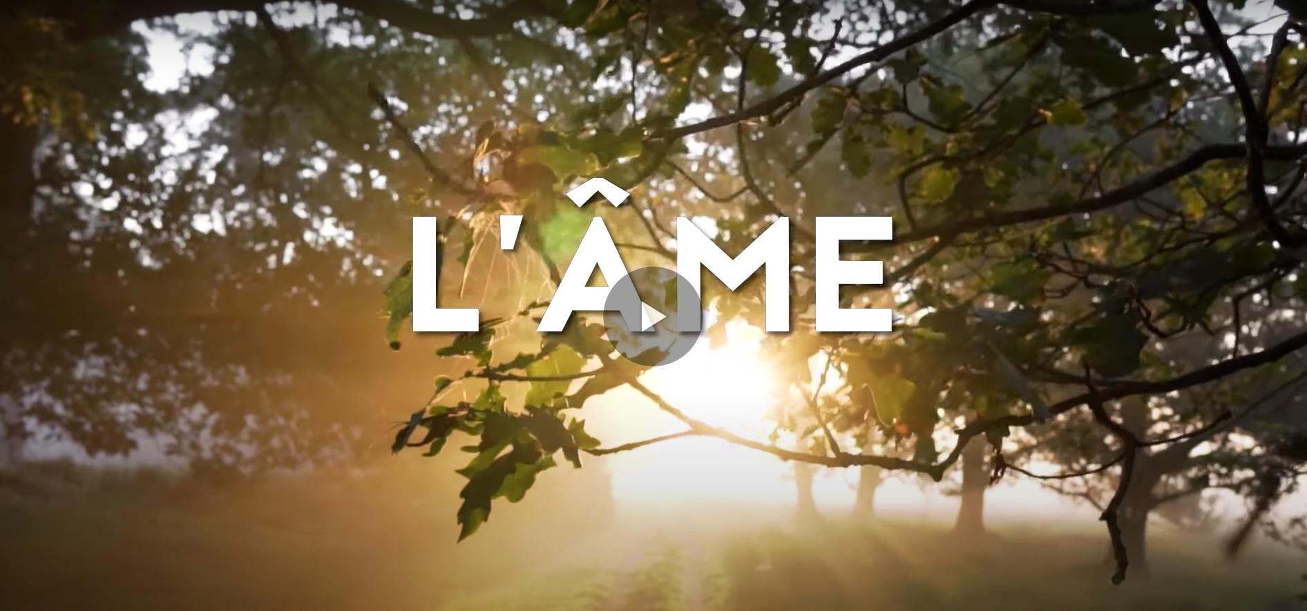 Read more about the article Film l'Âme de Valérie Seguin